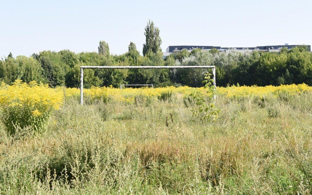 Jaki los czeka stadion Szyca?