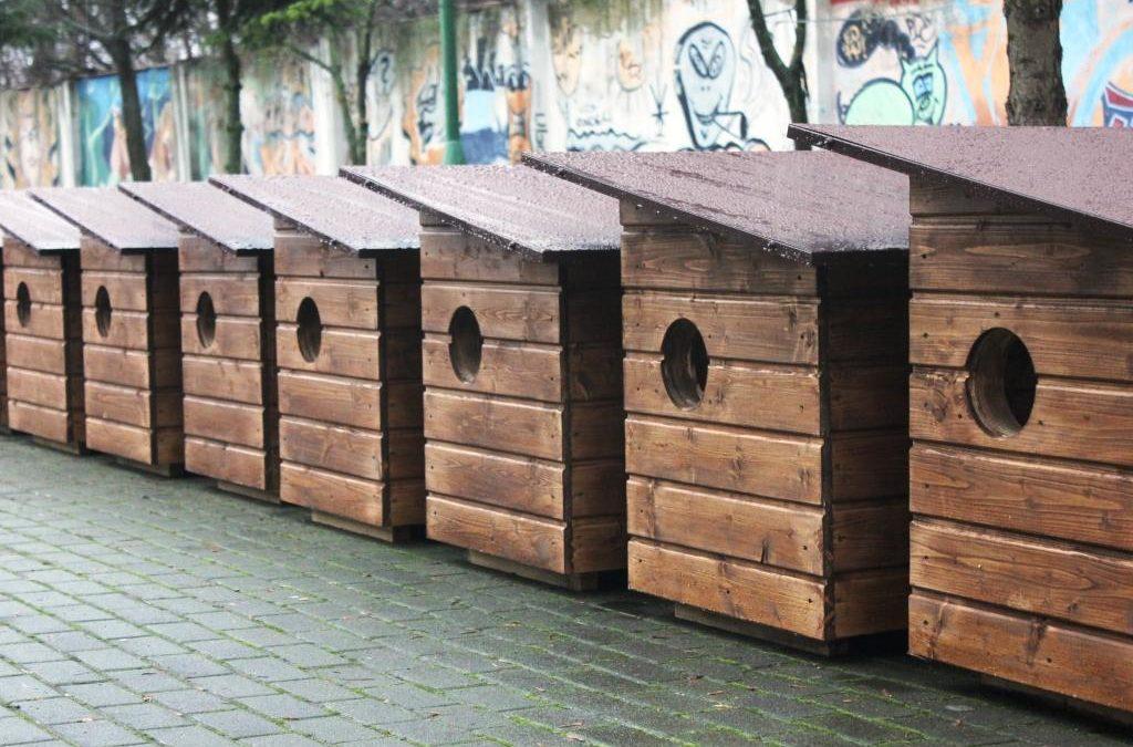 Domki dla wolno żyjących kotów