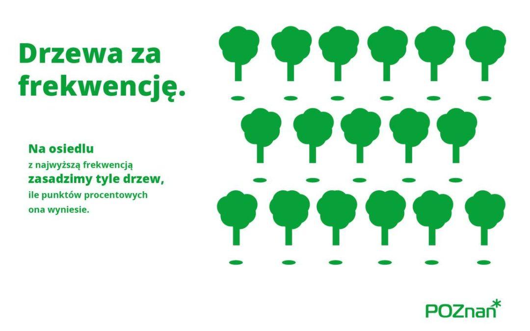 Wybory 2020: Miasto posadzi drzewa za frekwencję